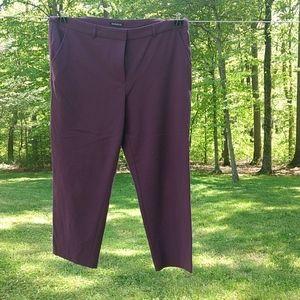 George Plum Cropped Pants Side Pockets Sz 16